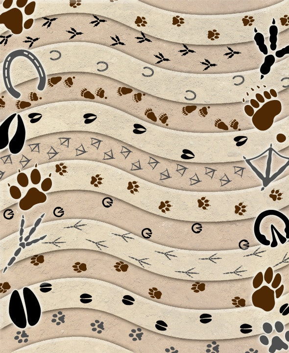 Animal Tracks Brush Set - Add-ons