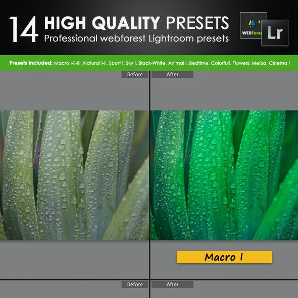 14 High Quality Lightroom Presets