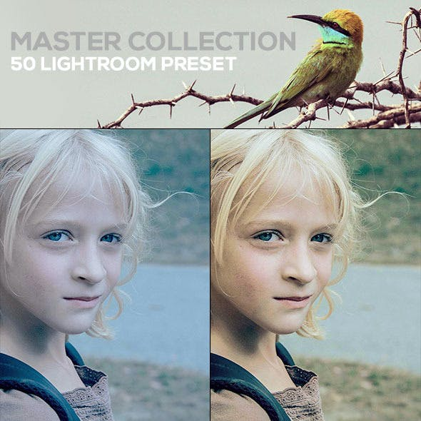 50 Master Collection Presets