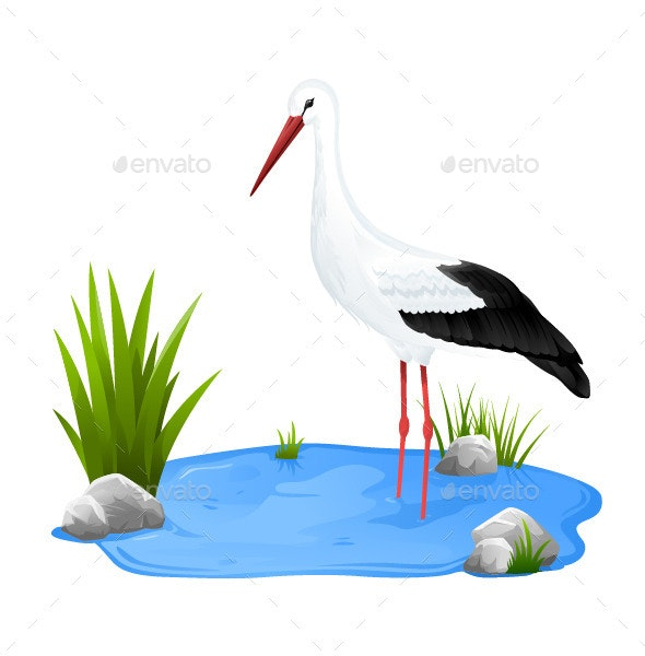 Small Pond with White Stork - Animals Characters