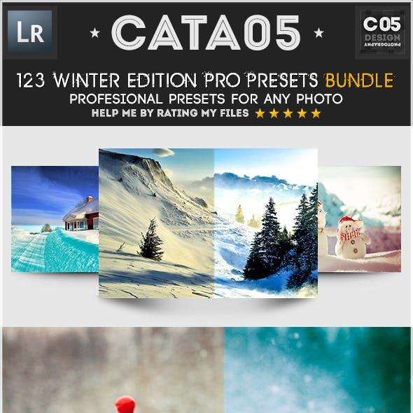 123 Winter Edition Pro Presets Bundle