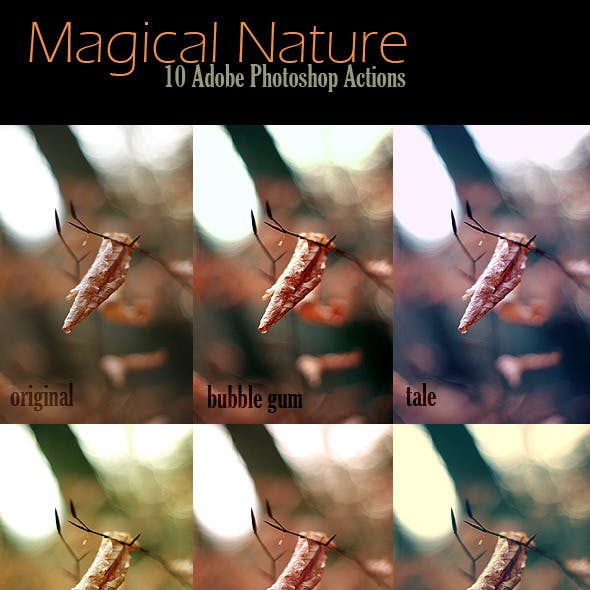 10 Magical Nature Adobe Photoshop Actions