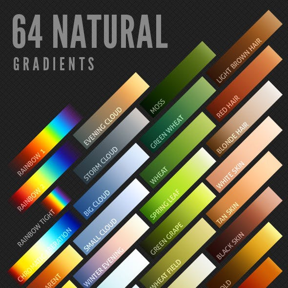 64 Natural Gradients