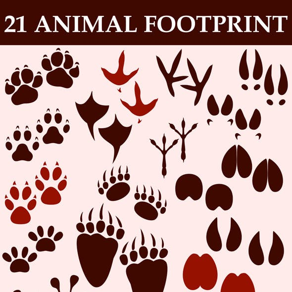 Animal Footprint Custom Shapes