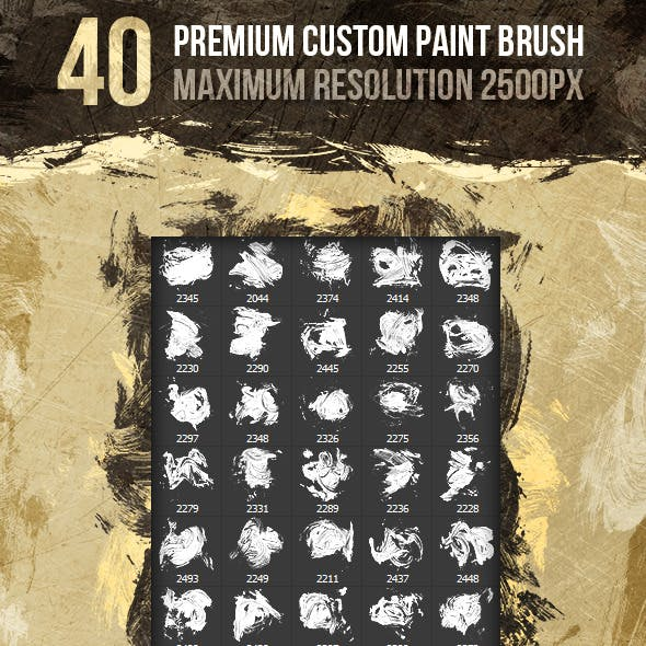 40 Premium HD Custom Paint Brush