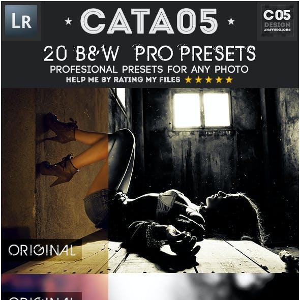 20 B&W  Pro Presets