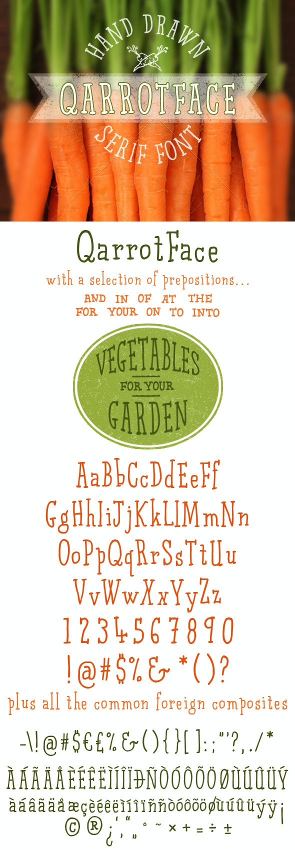 Qarrotface Handwritten Serif Font - Fonts