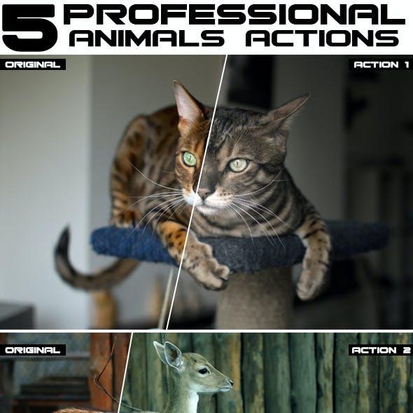 5 Professional Animal Photoshop Actions