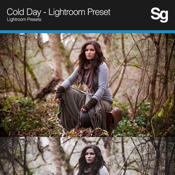 Cold Day - Lightroom Preset