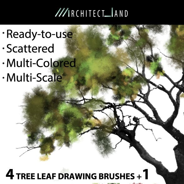 4 Tree Leaf Drawing Brushes + 1