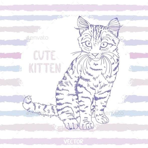 Kitten Sketch