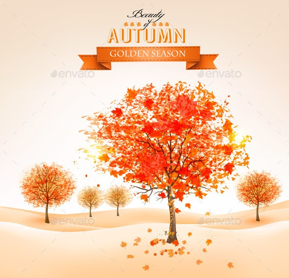 Autumn Background with Colorful Leaves and Trees. - Landscapes Nature