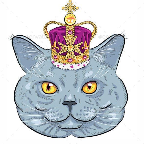 British Cat in Gold Crown