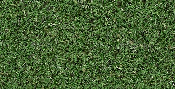 Autumn Tileable Grass