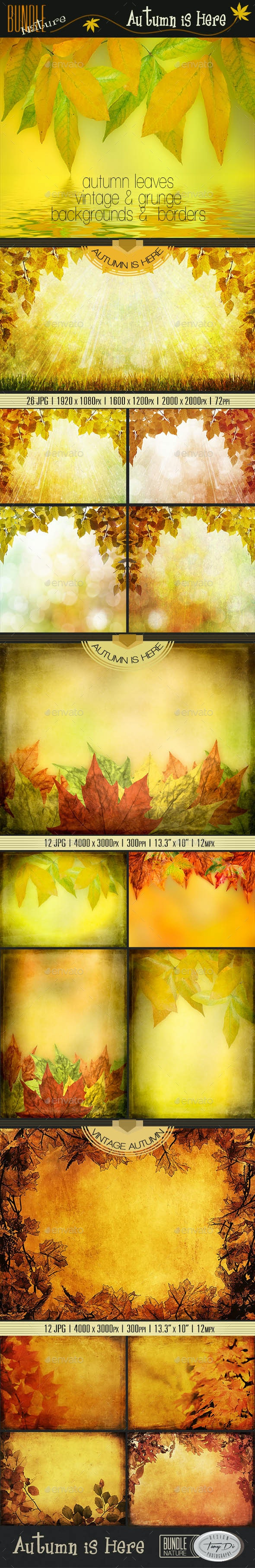 Autumn is Here | Bundle - Nature Backgrounds