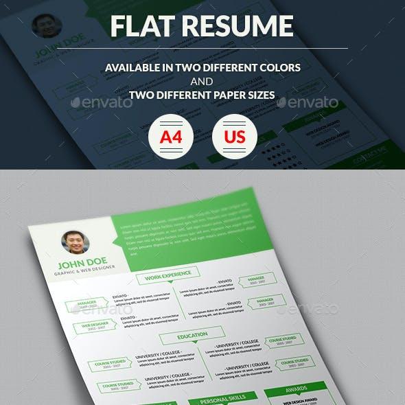Flat Resume/ CV
