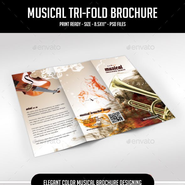 Tri-fold brochure for Musical Artist