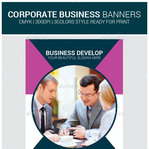 Business Rollup Banner Psd Template