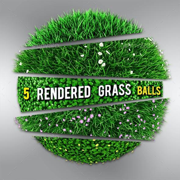5 Grass | Flowers Balls