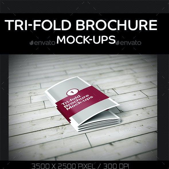 Tri-Fold Brochure Mock-Ups