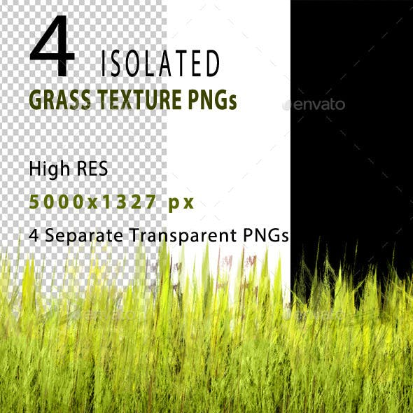 4 Isolated Grass Texture PNGs