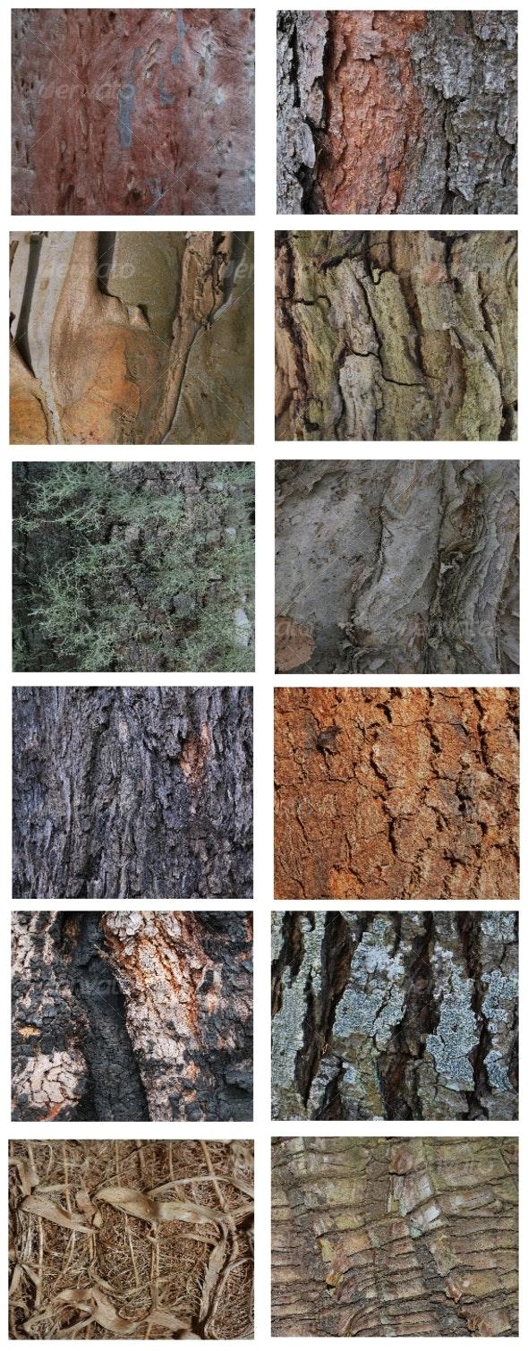 12 Natural bark backgrounds - Wood Textures