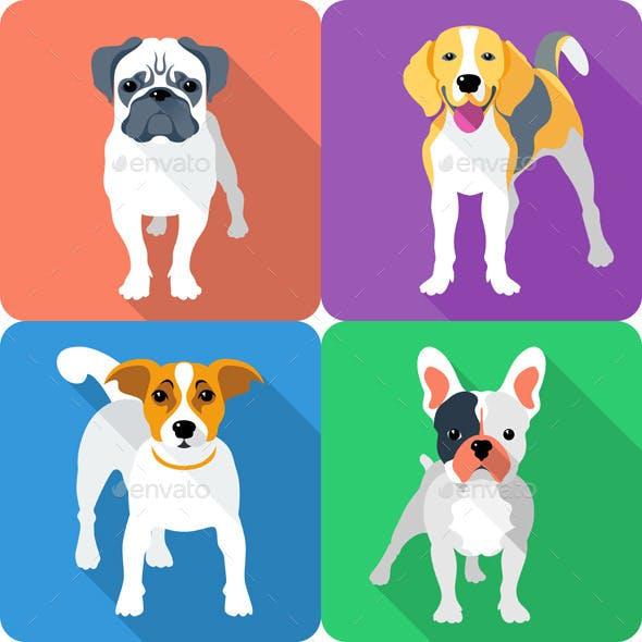 Vector Set Dog Icon Flat Design