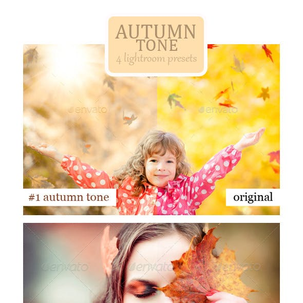 Autumn Tone - 4 Lightroom Presets