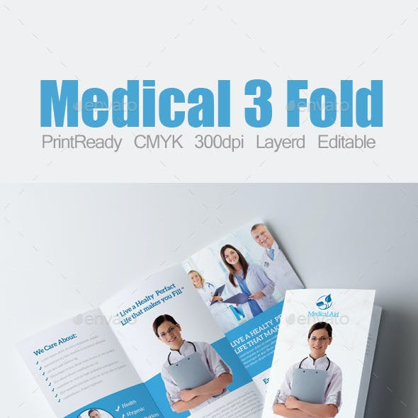 3 Fold Business Brochure