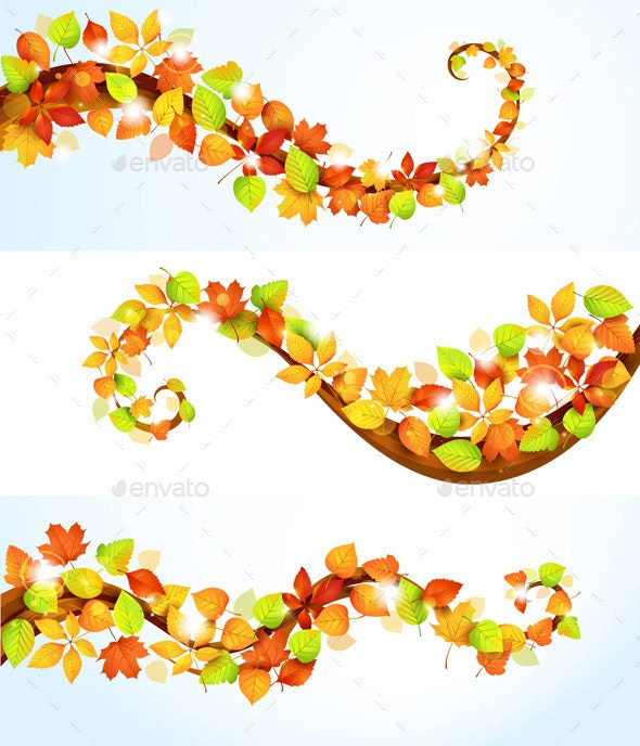 Collection of Autumn Leaves - Flowers & Plants Nature