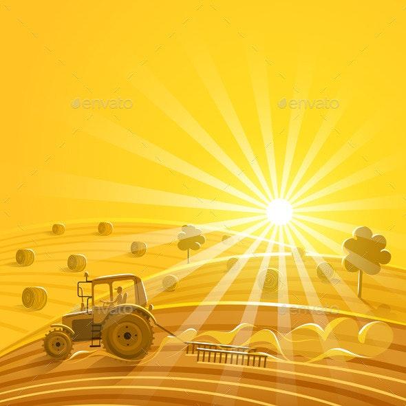 Harvesting on the Sunny Background - Landscapes Nature