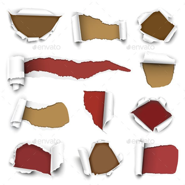 Collection of Torn Paper