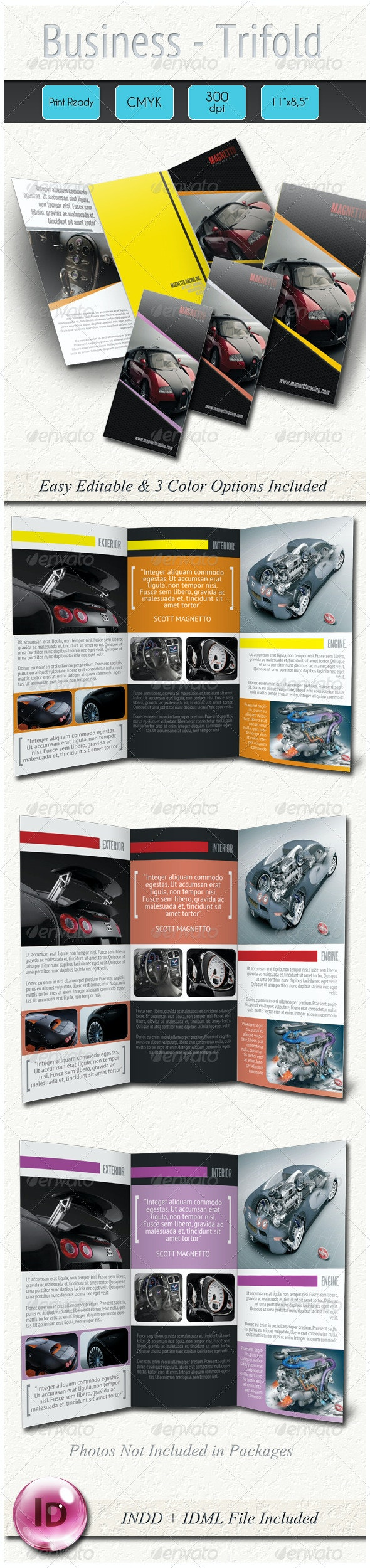 Professional Business Trifold - Corporate Brochures