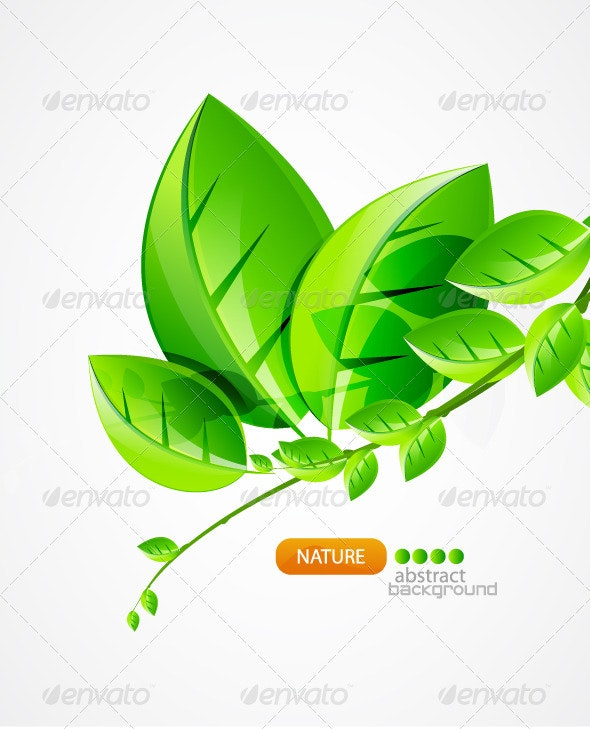Nature green concept background - Seasons Nature