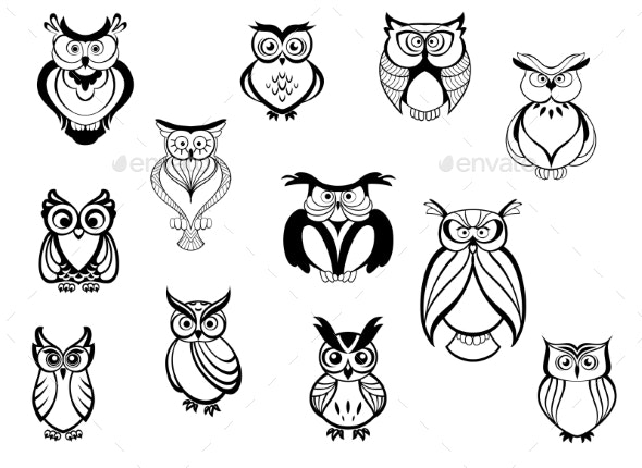 Owls and Owlets - Animals Characters