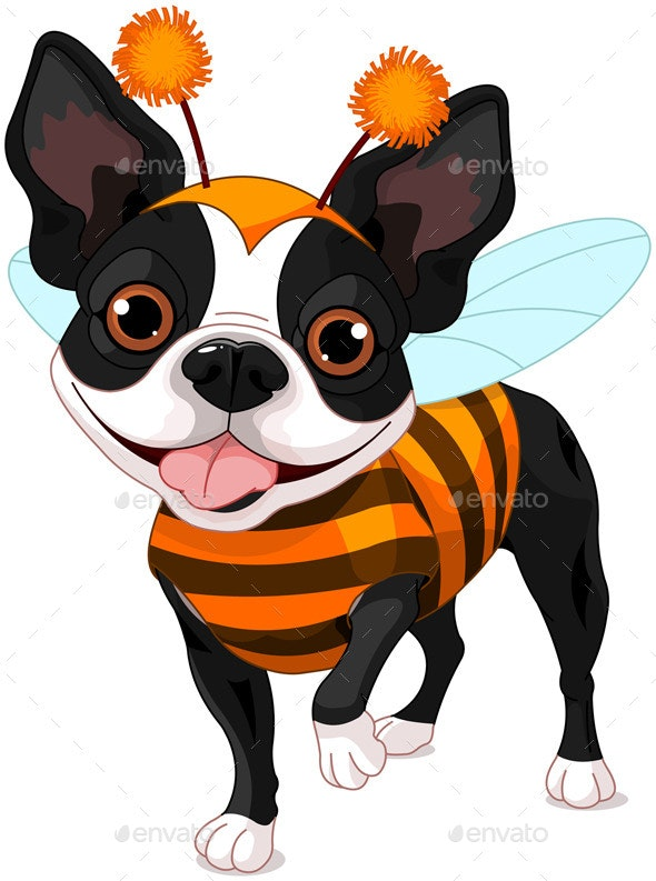 Halloween Boston Terrier - Halloween Seasons/Holidays
