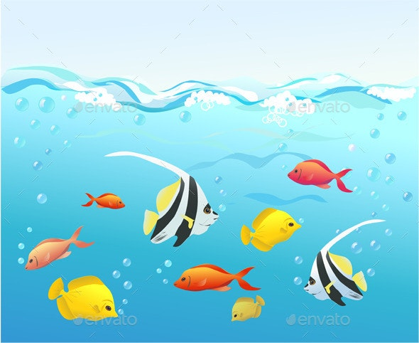 Coral Fish Under Water - Animals Characters
