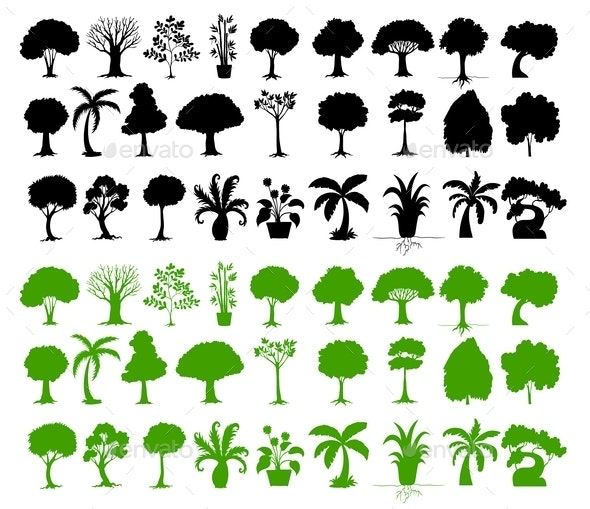 Variety of Trees - Flowers & Plants Nature