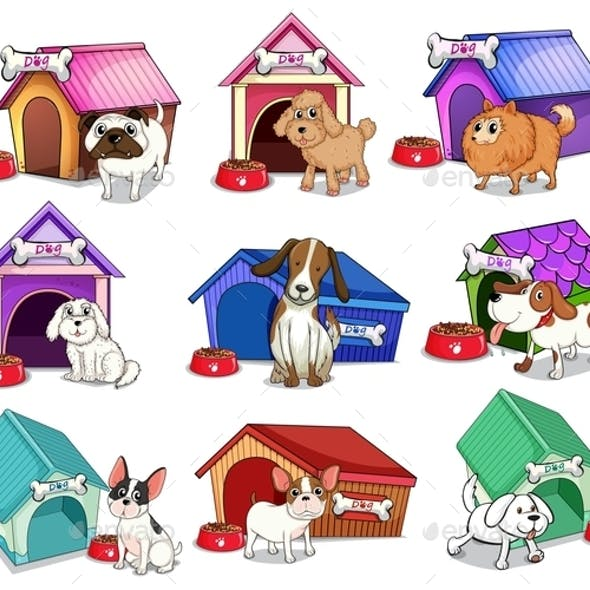 Dogs with Houses