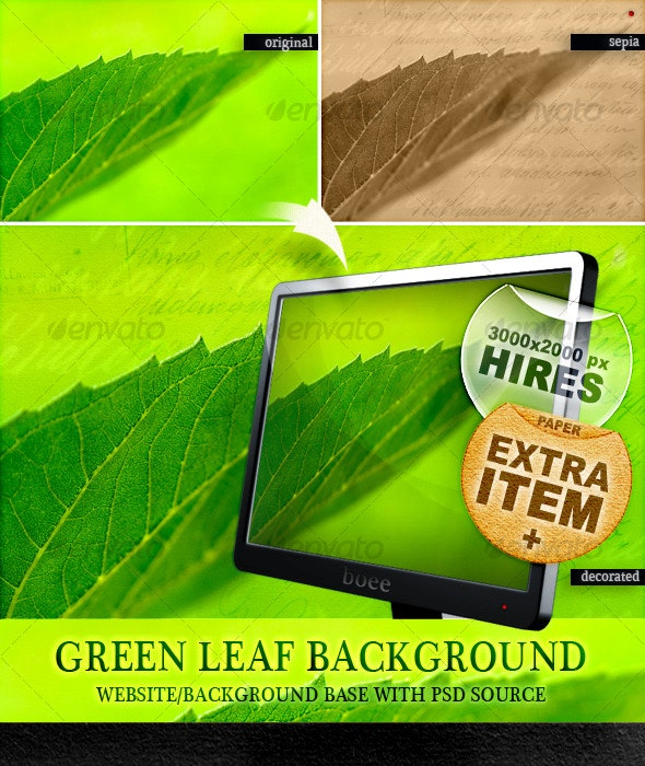 Green Leaf Background - Miscellaneous Graphics