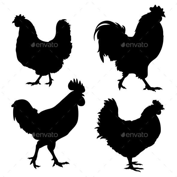 Chicken Silhouette