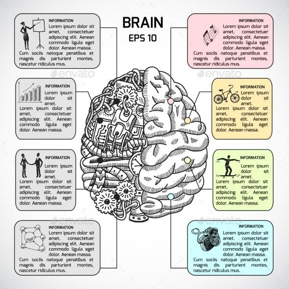 Brain Hemispheres Sketch Infographic - Concepts Business