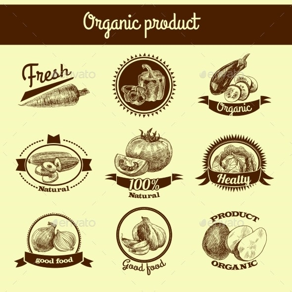 Vegetables Sketch Banner Set - Food Objects