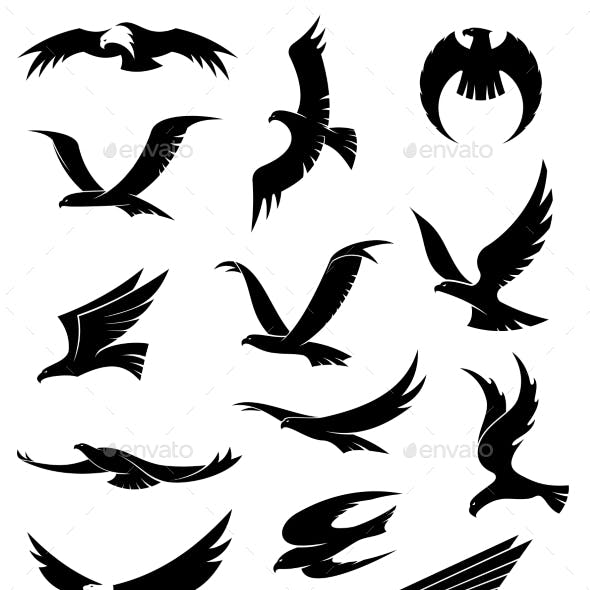 Flying Eagle, Falcon and Hawk Icons
