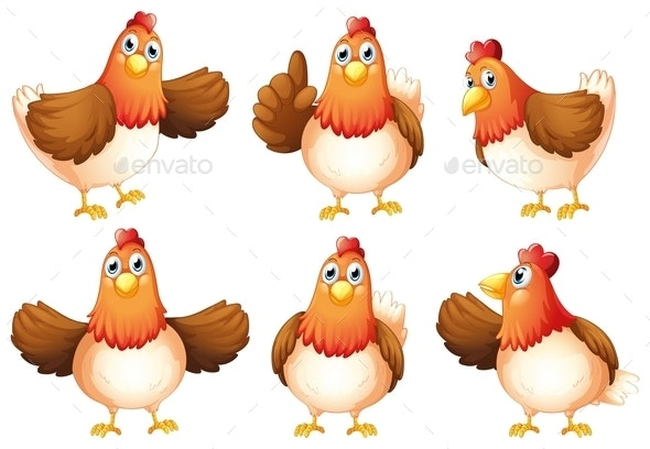 Six Fat Chickens - Animals Characters