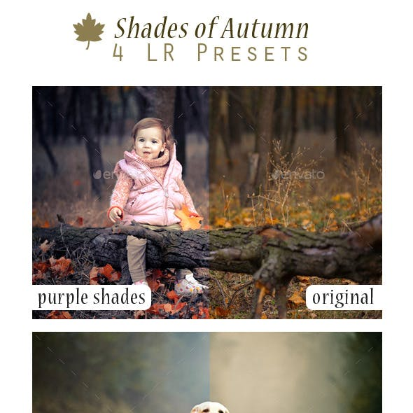 Shades of Autumn - 4 LR Presets