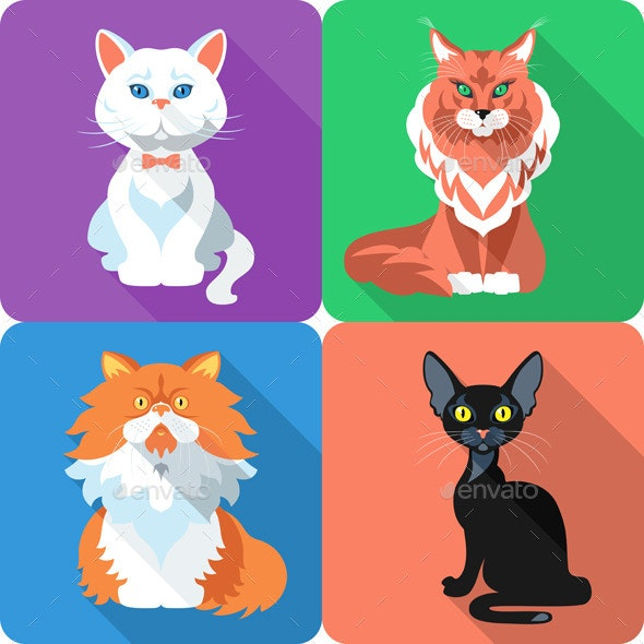 Set Cat Icon Flat Design  - Animals Characters