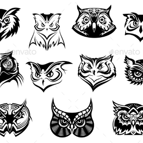 Set of Owl Heads