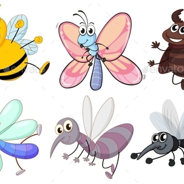 Six Flying Insects