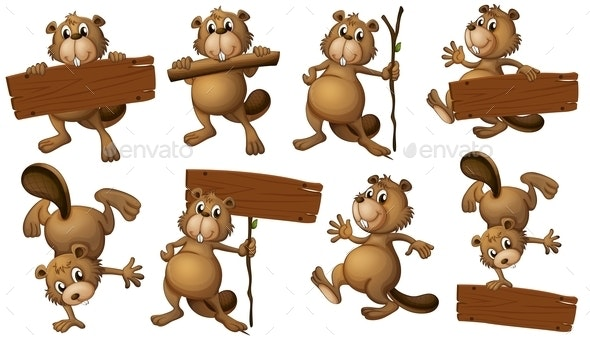 Beavers with Sign Boards - People Characters